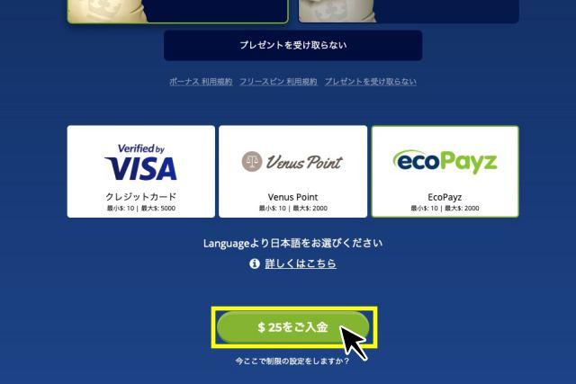 カジ旅 入金画面
