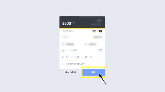 インターカジノ VISA入金画面
