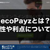 ecopayz(エコペイズ)とは?