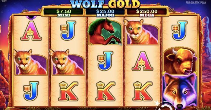 WOLF GOLD 画像